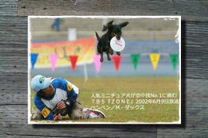 photo_fukuoka2